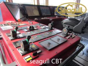 Seagull CBT – где скачать ответы, шпаргалка